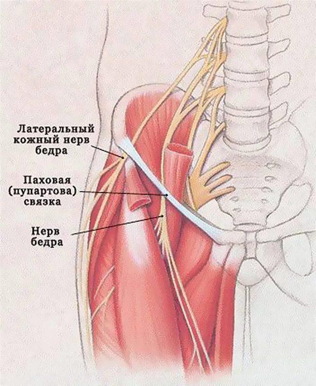 Защемление нерва тазобедренного сустава – симптомы и лечение