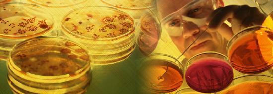 Инфекции носа и кожи вокруг – виды, фото, симптомы, лечение