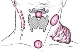 Комок или шишка в горле