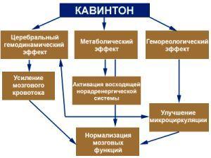 КАВИНТОН КОМФОРТЕ - инструкция по применению, цена, отзывы и аналоги