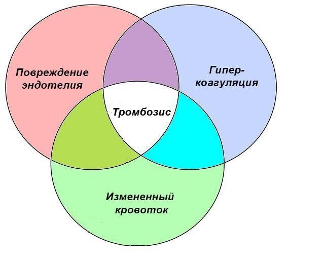 От чего образуются тромбы в сосудах: причины и механизм тромбообразования