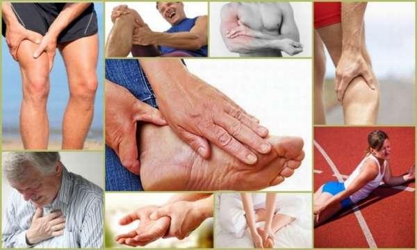 Сводит мышцы ног после тренировки: причины, как снять судороги, профилактика