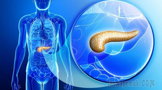 Симптомы рака поджелудочной железы на ранних стадиях, диагностика и лечение