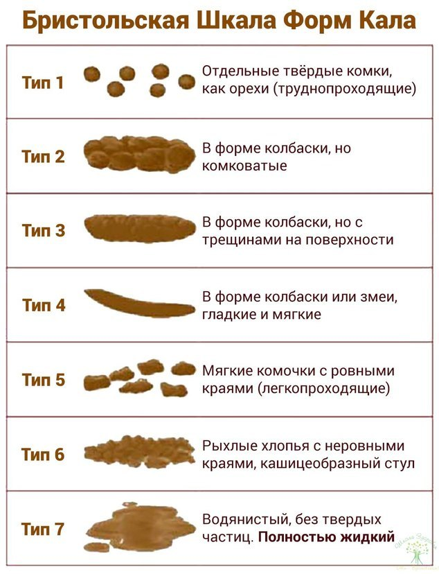 Копрология кала – что это такое и на какие патологии может указать