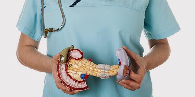 Какой врач лечит панкреатит: к кому обратиться при воспалении поджелудочной